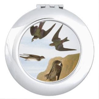 Audubon: つばめ