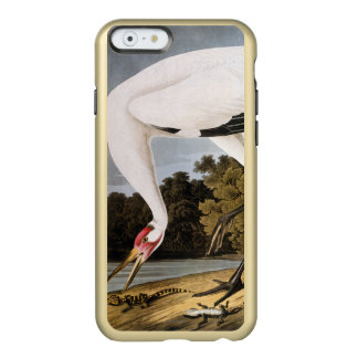 Audubon: アメリカシロヅル incipio feather shine iPhone 6ケース