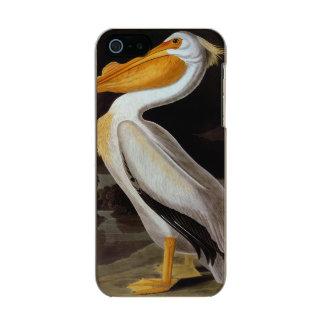 Audubon: 素晴らしいモモイロペリカン メタリックiPhone SE/5/5sケース