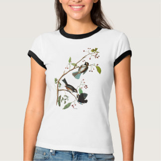 Audubon: 《鳥》アメリカゴガラ tシャツ
