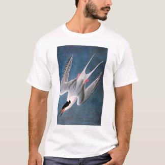 Audubon: Roseateアジサシ Tシャツ
