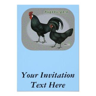 Augsburgerの家禽 カード