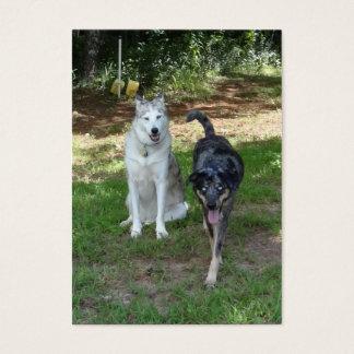 Ausky犬およびCatahoulaのヒョウ犬の友人 名刺