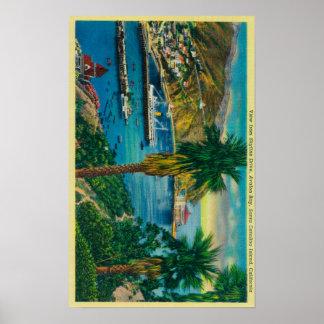 Avalon湾、スカイラインからのサンタCatalinaの島 ポスター