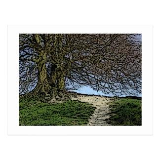 Avebury、ウィルトシャー、イギリス。 木および道 ポストカード