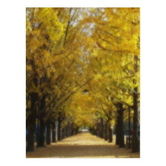 Avenue of autumn ポストカード