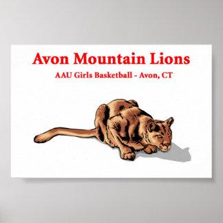 Avonのオオヤマネコ-バスケットボールクラブポスター ポスター
