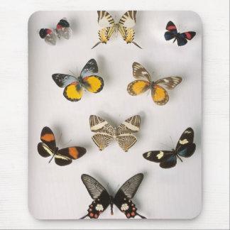 Awsomeの蝶コレクション マウスパッド