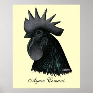 Ayam Cemaniのオンドリの頭部 ポスター