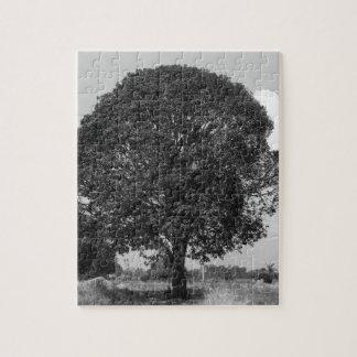 B&Wのマンゴの木 ジグソーパズル