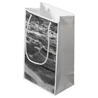 B&Wの化石森林 スモールペーパーバッグ