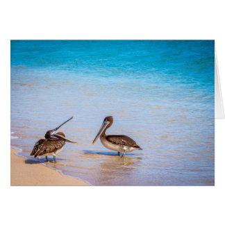 Bachasのビーチのペリカン カード