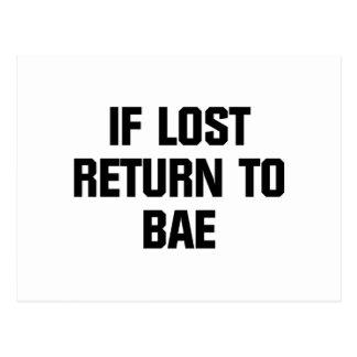 Baeに戻して下さい ポストカード