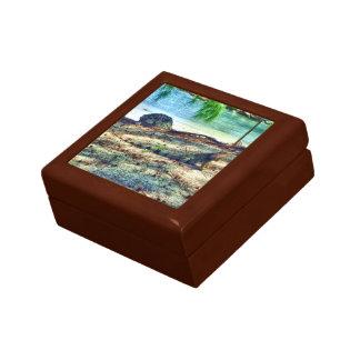 bahamaのイグアナのギフト用の箱 ギフトボックス