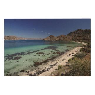 Bajaの概念湾 ウッドウォールアート