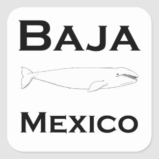 Bajaメキシコのコククジラ スクエアシール