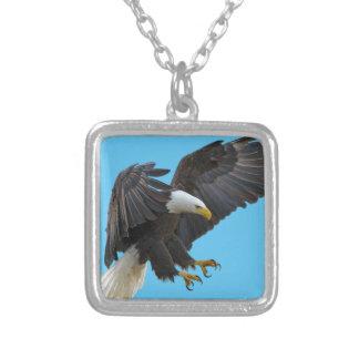 Bald eagle シルバープレートネックレス