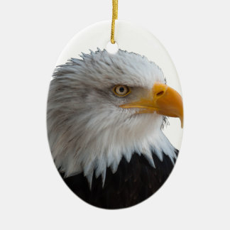 Bald eagle セラミックオーナメント