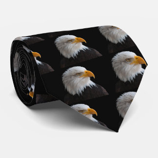 Bald eagle タイ