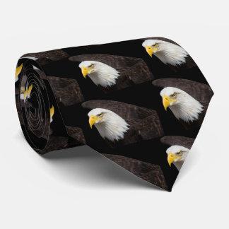 Bald eagle ネクタイ