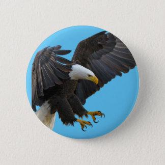 Bald eagle 缶バッジ