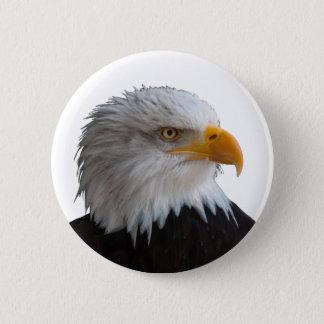Bald eagle 5.7cm 丸型バッジ