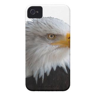 Bald eagle Case-Mate iPhone 4 ケース