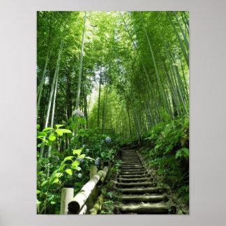 Bamboの森林道階段ステッププリント ポスター