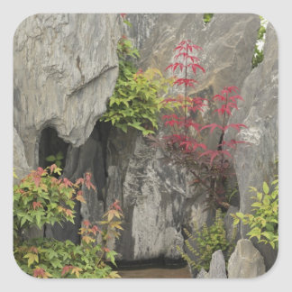 Baoの家族の庭、Huangshan、中国 スクエアシール