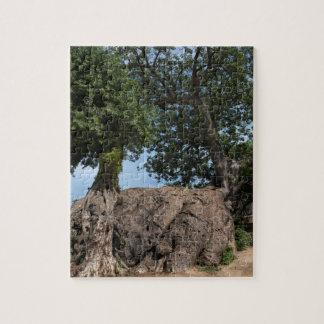 BaoBabの木、かMoanaの木、バオバブのdigitata ジグソーパズル