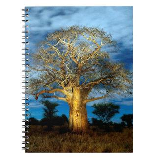 Baobab (バオバブ)の木は月によってつきます ノートブック