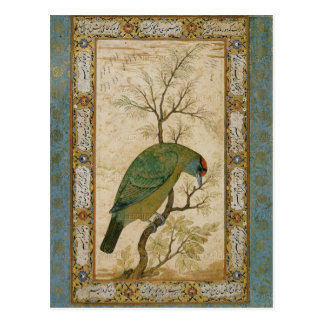 Barbet (ヒマラヤ青throated鳥) ポストカード