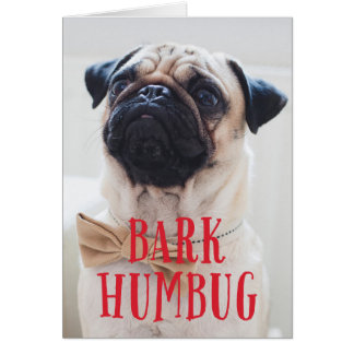 Bark Humbug Cute Puppy Dog | Holiday Photo Folded カード