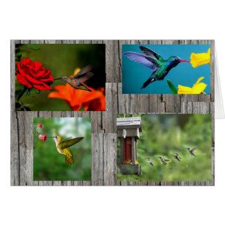 barnwoodの背景のハチドリ カード