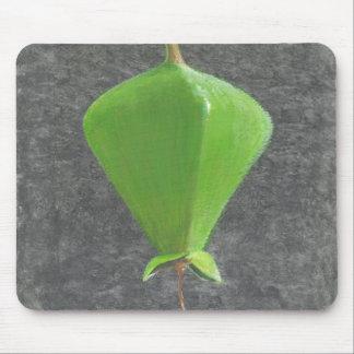 Barringtonia Acutangula マウスパッド
