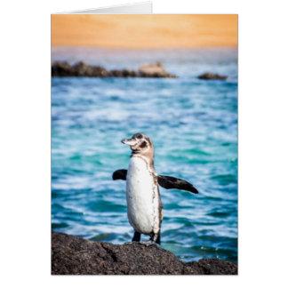 Bartolomeの島のペンギン カード
