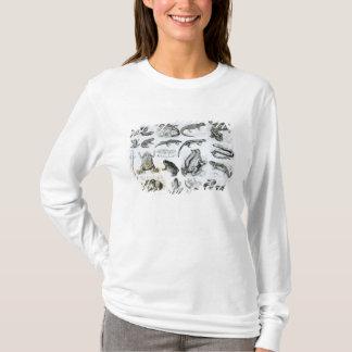 Batrachiansおよび他の両生綱 Tシャツ
