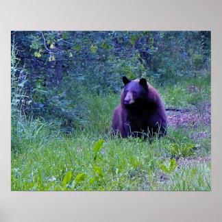 Bearママ ポスター