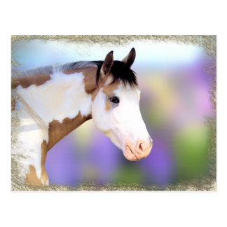 Beautiful Horse Postcards ポストカード
