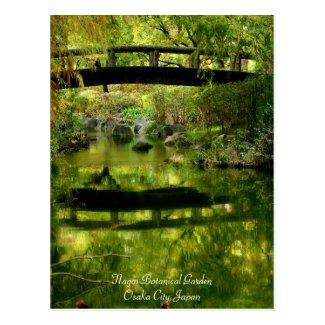 Beautiful scenery:Postcard ポストカード