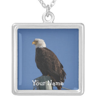 BEBSの白頭鷲の青空 シルバープレートネックレス