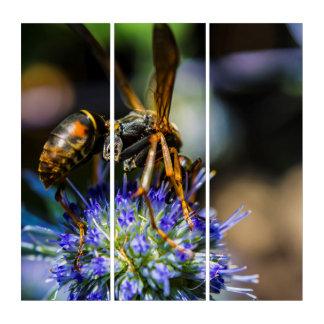 Bee Aware AcryliPrint®HD Triptych Wall Art トリプティカ
