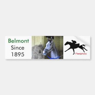 Belmontのバックストレッチを愛すること バンパーステッカー