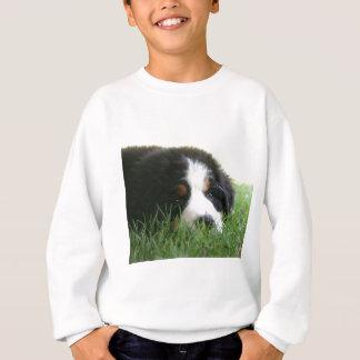 Berneseの子犬 スウェットシャツ