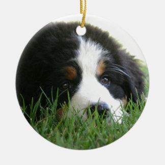 Berneseの子犬 セラミックオーナメント