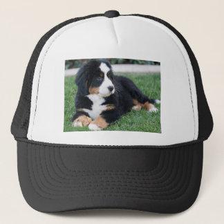 Bernese山の子犬 キャップ