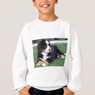 Bernese山の子犬 スウェットシャツ