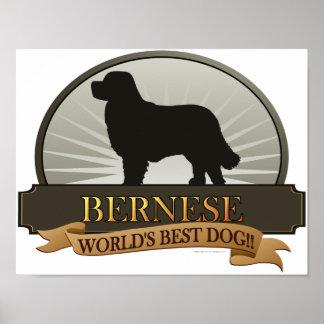 Bernese ポスター