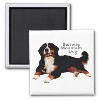 BERNESE Mt.犬 マグネット