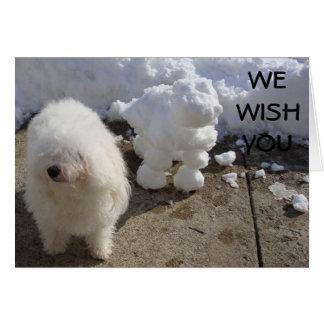 BICHONのFRISEおよび雪犬の願い カード